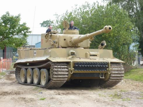 tiger1-bovingtons